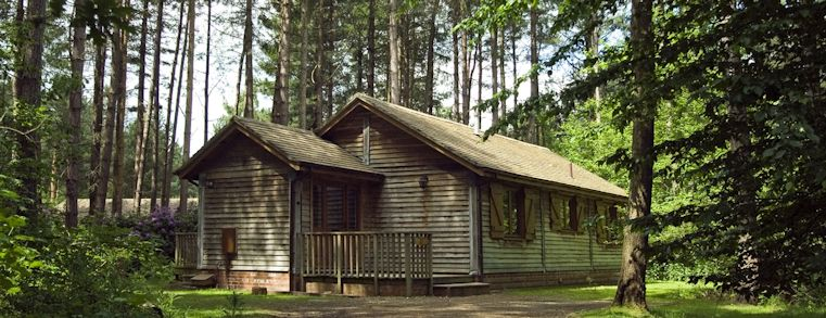 Image of log cabin in a woodland area