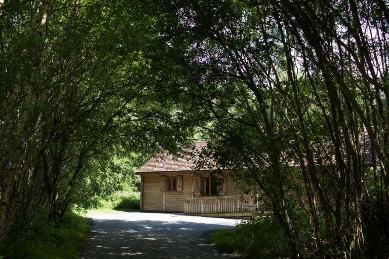 Log cabin shown through woodland